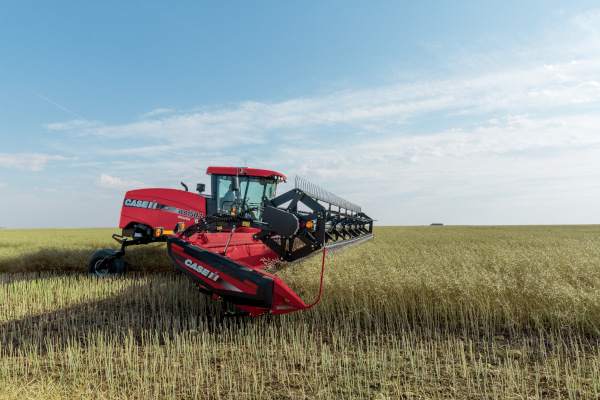 CaseIH-WindrowersSeries-2019.jpg